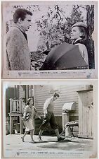 26 LOBBY CARD PHOTO Collection SPLENDOR IN THE GRASS Natalie WOOD Warren BEATTY