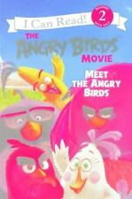 THE ANGRY BIRDS Meet the Angry Birds (Brand New Paperback) Chris Cerasi