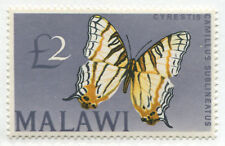 Malawi 1966 £2 Butterfly mint o.g.