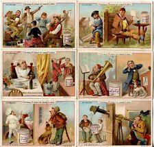 Chromo Liebig Sang. 254 BEL I Cinque Sensi I ANNO 1886