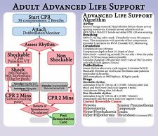 Advanced Life Support Algorithm Lanyard Reference Card - ALS ACLS