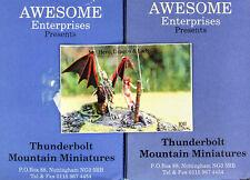 Thunderbolt Mountain Miniatures-Awesome Enterprises-My Hero,Dragon,Knight & Lady