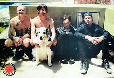 "RED HOT CHILI PEPPERS ""BAND WITH DOG"" POSTER FROM ASIA - Funk/Alt/Rap Rock Music"