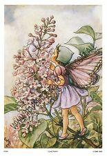 Paper tole kit - Lilac Fairy