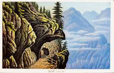 c1870 Schweiz Switzerland Wallis Trient tete noire Kolorierte Ansicht Dikenmann