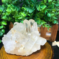 683g  Natural Clear White Quartz Crystal Cluster Rough Healing Specimen 53