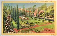 A Beautiful Southern California Garden Postcard Vintage Linen Card Flowers