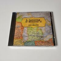 NEW David Tamulevich A Gathering of Moments II 2 CD Folk 2015 Mustards Retreat