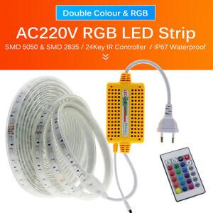 High Safety Commercial LED Strip 220V 240V 5050 rgb Waterproof Garden Rope Light
