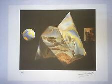 Salvador Dali Litografia 50 x 65 Bfk Rives Timbro a secco Firmata a Matita D302
