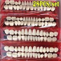 Temporary Crown Resin Acrylic Simulation Teeth Tooth Tool Teeth Veneers
