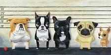 THE LINEUP ART PRINT BY BRIAN RUBENACKER 24X12 dog bulldog pug chihuahua poster