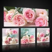 CANVAS XXL Wandbild Leinwandbild Bild Kunst Blumen Rose Vogel Haus Schlafzimmer