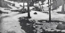 1899/63 Vintage 11x14 Winter Snow WISCONSIN Landscape Photo Art EDWARD STEICHEN