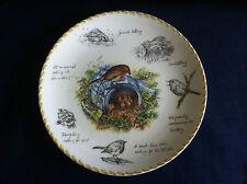 "Wedgwood Birdwatchers Notebook ""The Robin "" plate (small scratches)"