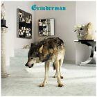 Grinderman - Grinderman 2 Limited Deluxe CD