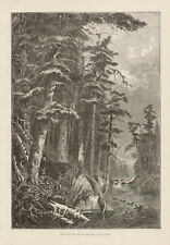 New York, Lake Racquette, Pines, Ducks Vintage 1872 Original, Antique Art Print,