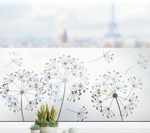Pusteblume Glasdekor Fenster Sichtschutzfolie Aufkleber Glastattoo Folie g417