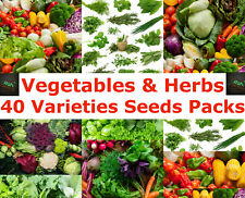 Vegetables Herbs Seeds 40 Varieties Mega Seeds Packs Registered AusPost Delivery