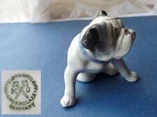 Porzellan Figur Hund/ Französische Bulldogge Metzler & Ortloff, Jahr 1972   F591