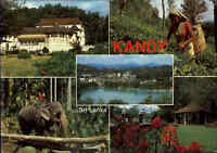 SRI LANKA (Ceylon) Post Card KANDY Traditional Spots color Mehrbildkarte AK