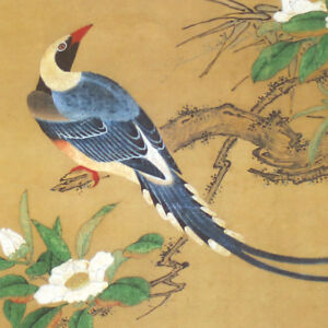 Print on Paper of Antique Bird Painting by Yosetsu Kano 狩野養拙 #301
