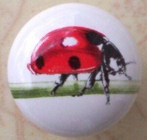 Ceramic Cabinet  Knobs Lady bug Ladybug Insect