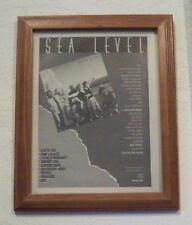 SEA LEVEL - 1978 Promo Ad Framed Cats On the Coast, Allmand Brothers Band