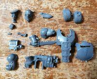 Warhammer 40k Astra Militarum Bits :Bullgryns Ogryns Nork Deddog Upgrade