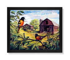 Oriole Birds Wood Barn Country Animal Wall Picture Black Framed Art Print