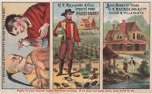 RARE Catalog Brochure 1880 Folder - CT Raynolds House & Villa Paints Trade cards