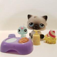 Lps Littlest Pet Shop Toy 60 Cat Kitten Himalayan Accessories Blue Dot Eyes