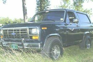 For Ford F-150 F250 Bronco 1980-1986 QMI PolishedStainless Steel  Fender Trim