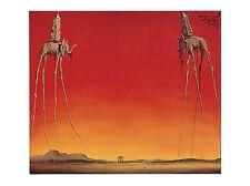 Salvador Dali Les Elephants Art Poster Print 31.5x23.5