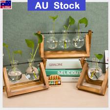 AU Wooden Stand Hanging Glass Terrarium Container Hydroponics Pot Vase Decor