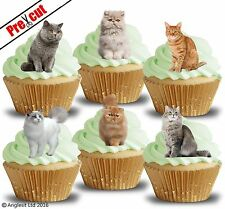PRE-CUT CATS EDIBLE WAFER PAPER CUP CAKE TOPPERS BIRTHDAY PARTY DECORATIONS