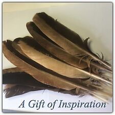 Single RARE Brown Natural Eagle Feather 30-34cm DIY Craft Smudge Fan Quill
