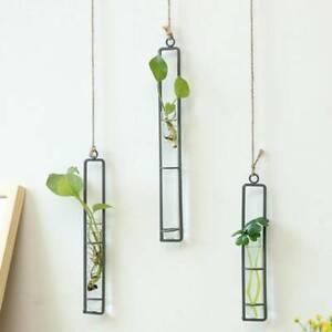 Transparent Hanging Vase Glass Wall Planter Tube Living Flower Room Decor Sets