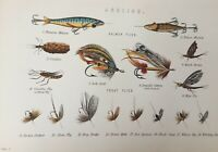 ANTIQUE PRINT C1870'S ANGLING FISHING SALMON & TROUT FLIES COLOUR ENGRAVING FISH