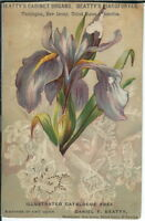 AF-039 Beatty's Cabinet Organs Washington, NJ Victorian Advertising Trade Card