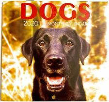 2 Pack of 12 Month 2020 Wall Calendars Dogs New Sealed