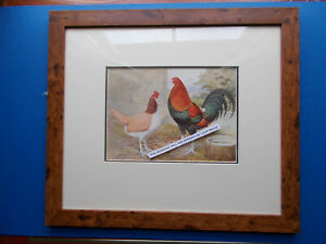 CHICKEN PRINT FRAMED (A) EARLY PRINT