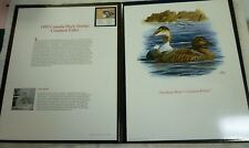 1992 Canada Duck Stamp And Signed Print In Fleetwood Binder Don Balke Free Ship