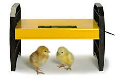 Brooder for Chicks or Ducklings EcoGlow