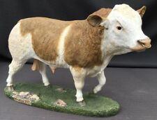 Fabulous Sherratt & Simpson - Simmental Bull