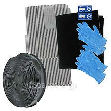 Type 30 Carbon Vent Filter Extractor Kit for Hoover HBP60X