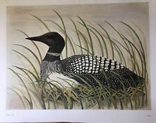 Common Loon In Tall Grass 25H X 33W Overall Print By Mira