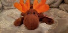 "New ListingNew! Ty Beanie Babies Chocolate The Moose 6"" Plush Stuffed Animal W/Tags"