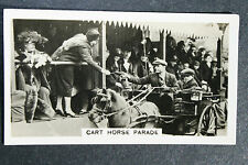 Carrello CAVALLO PARATA PREMIO Pony azione PHOTOCARD anni 1930 VINTAGE card in buonissima condizione
