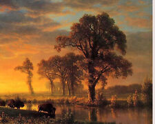 Sunset In Western Kansas Buffalo Landscape Oil Painting Canvas Fine Art Print